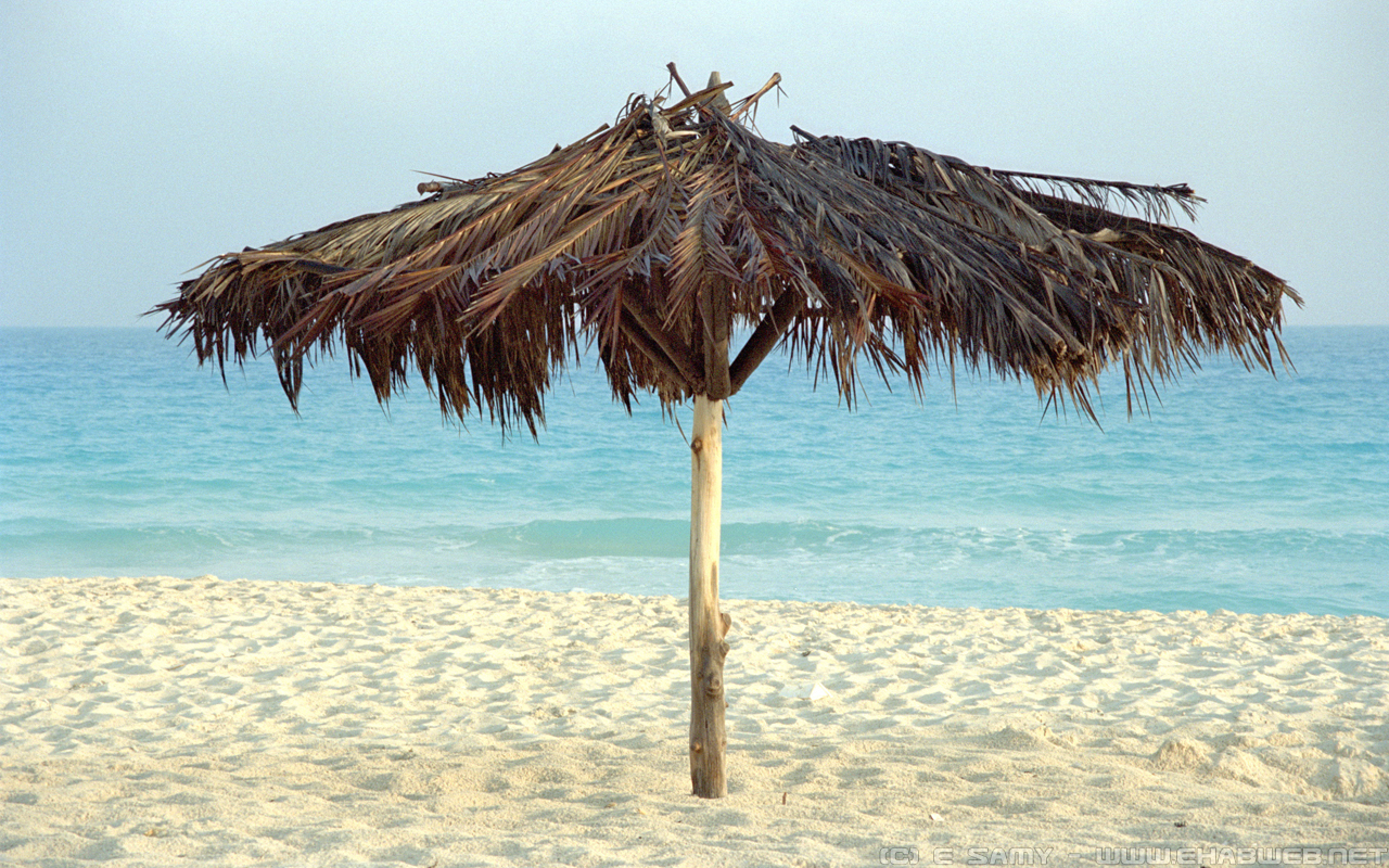 Beach Umbrella Wallpaper