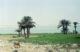 Lake Qarun - Al Fayoum - الفيوم