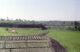 Farm fields - Al fayoum - الفيوم
